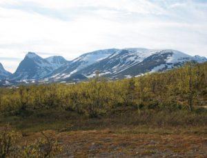 Swedish mountains2